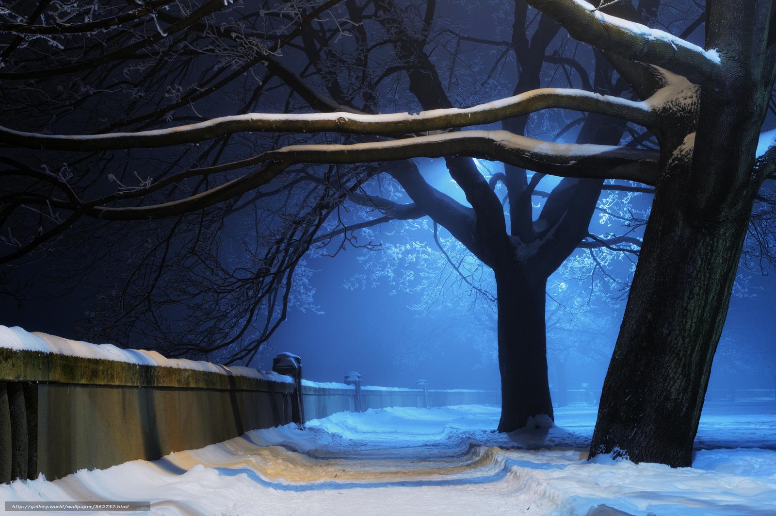 Tlcharger Fond d'ecran Nature,  hiver,  arbres,  parc Fonds d'ecran gratuits pour votre rsolution du bureau 2560x1700 — image №362737