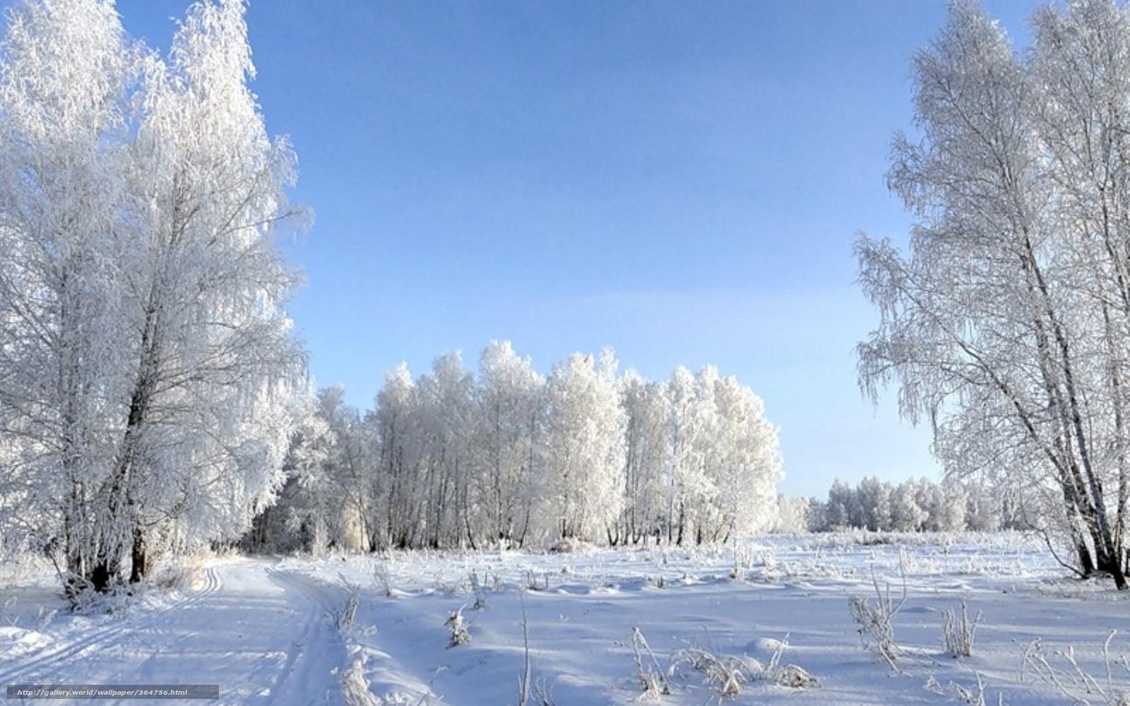 Scaricare gli sfondi natura neve inverno freddo sfondi for Immagini inverno sfondi