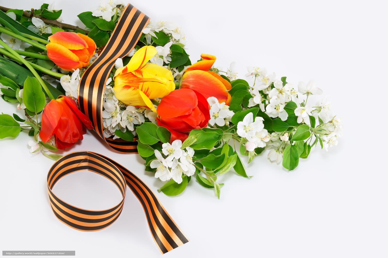 Baixar Wallpaper 09 de maio,  vitria,  Flores Papis de parede grtis na resoluo 9184x6112 — quadro №369527