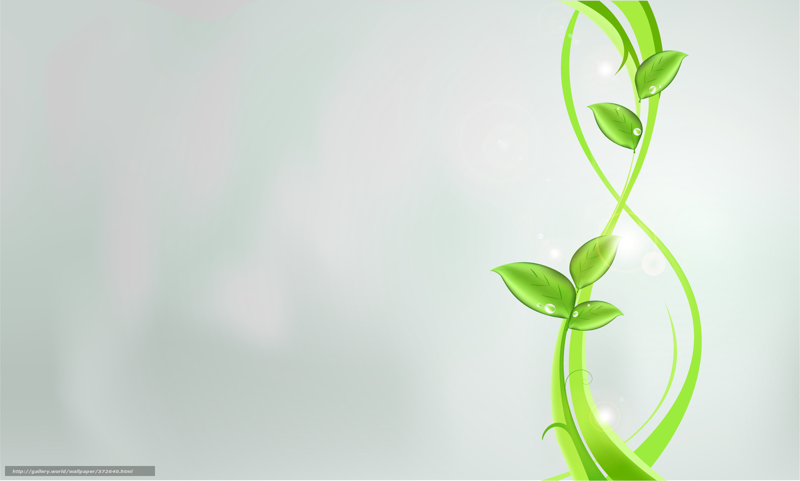 Download wallpaper Plants,  green,  abstraction,  leaves free desktop wallpaper in the resolution 5002x3006 — picture №372640