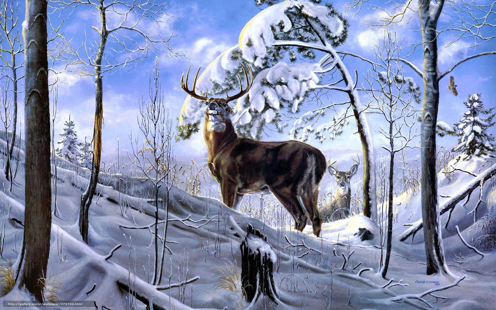 Рыжий лес Чернобыля что случилось с деревьями фото