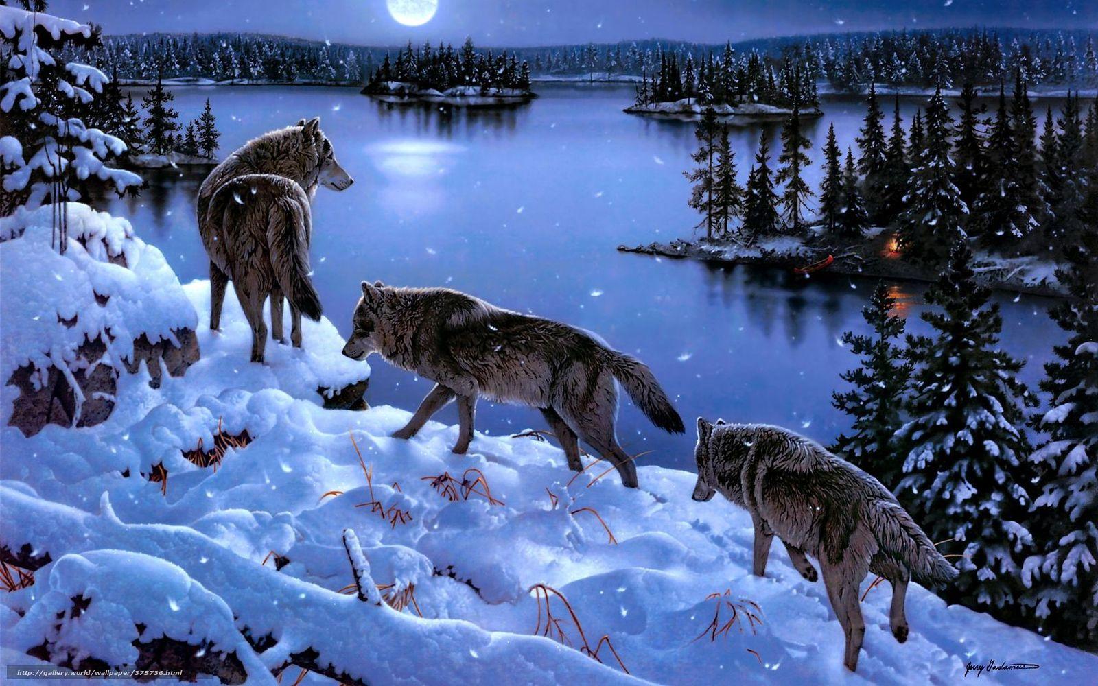Tlcharger fond d 39 ecran loups hiver lac neige fonds d for Fond ecran hiver animaux