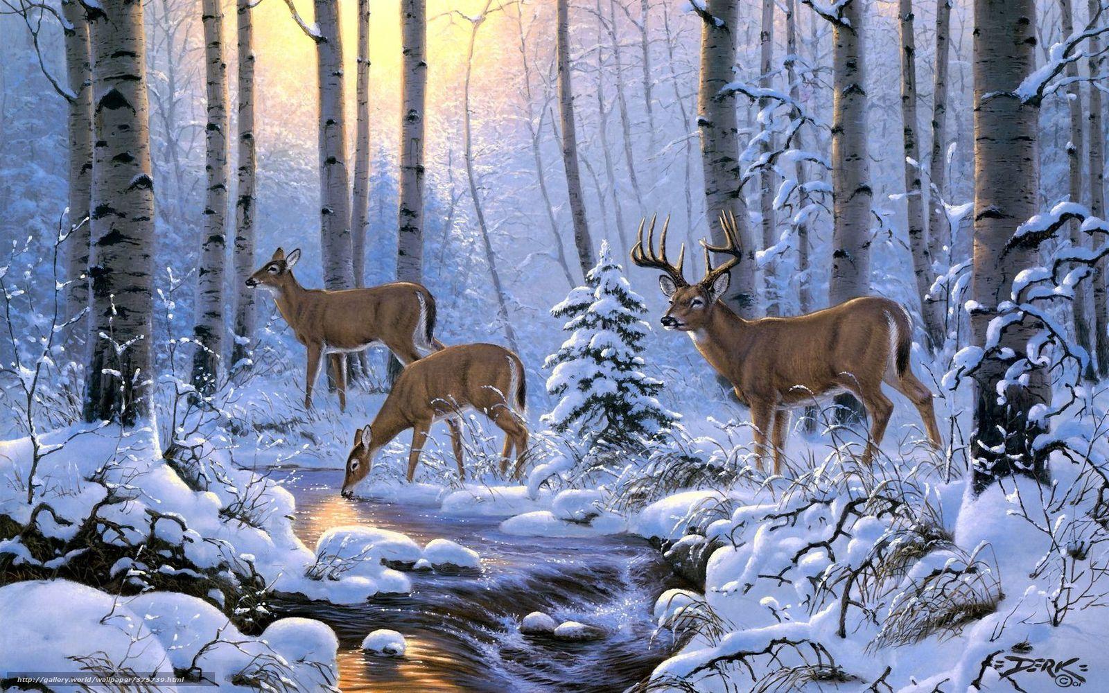 Tlcharger fond d 39 ecran cerf hiver fort neige fonds d for Fond ecran hiver animaux