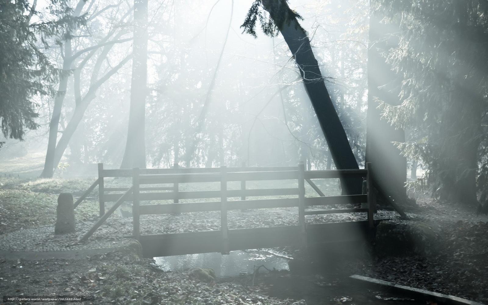 pobra tapety park,  most,  mga,  krajobraz Darmowe tapety na pulpit rozdzielczoci 1680x1050 — zdjcie №382850