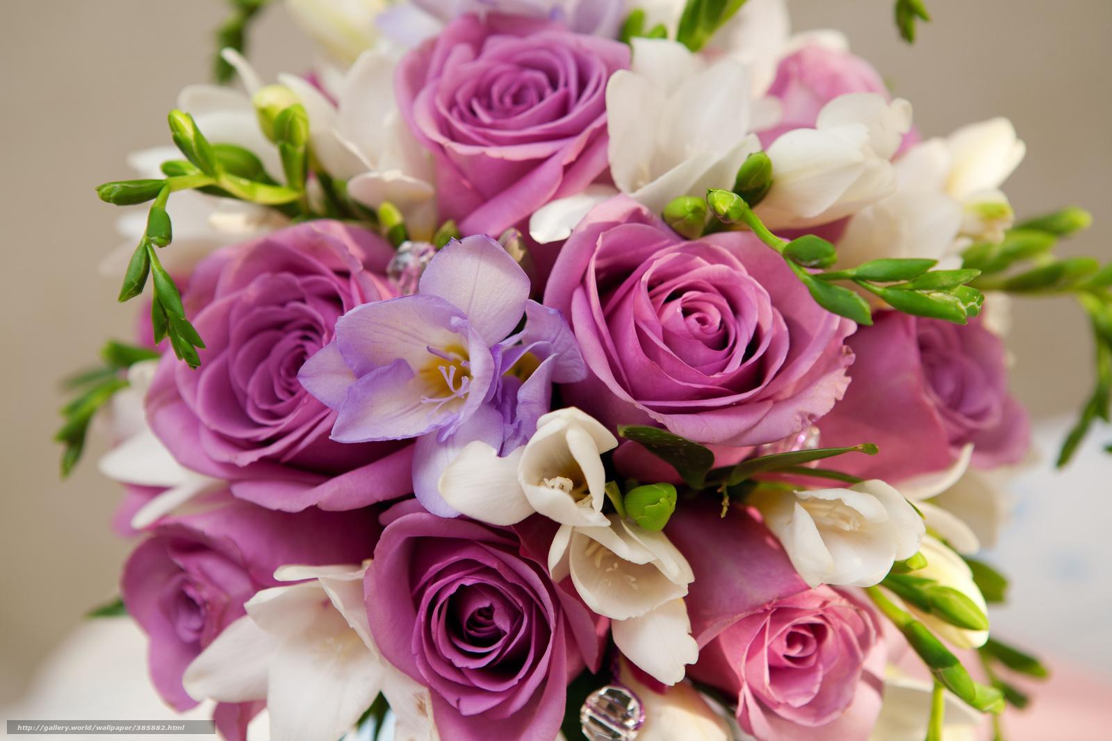 Открытки с самыми красивыми цветами