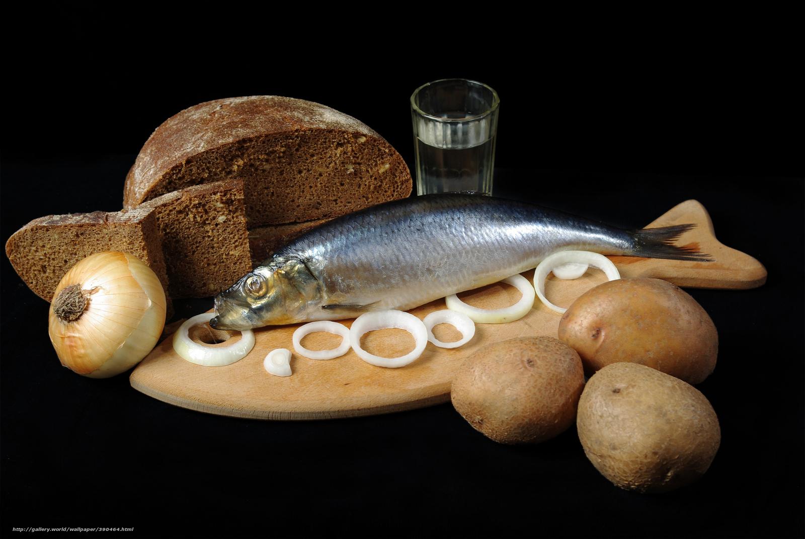 Скачать обои чёрный хлеб,  луковица,  кольца,  селёдка бесплатно для рабочего стола в разрешении 8844x5920 — картинка №390464