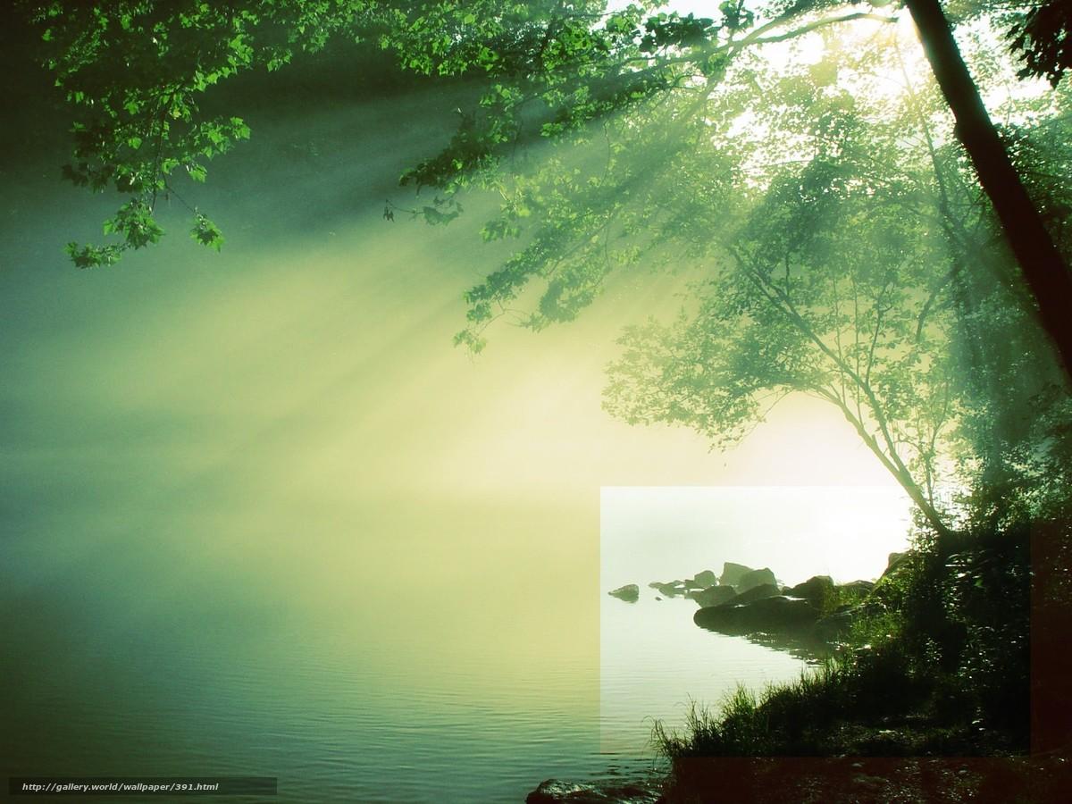 Скачать обои солнце,  река,  дерево,  вода бесплатно для рабочего стола в разрешении 1600x1200 — картинка №391