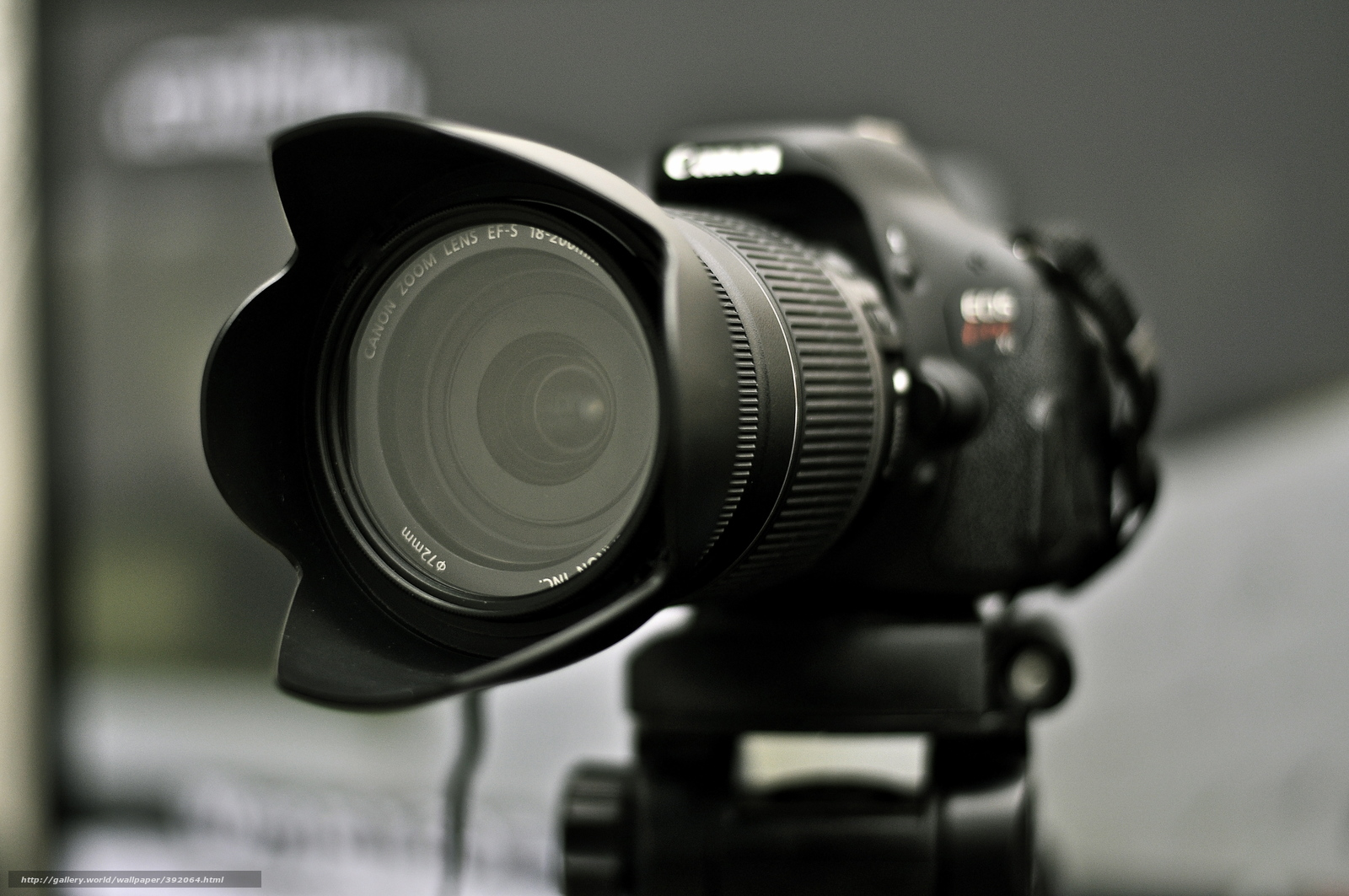 Tlcharger fond d 39 ecran canon appareil photo lentille for Ecran appareil photo canon