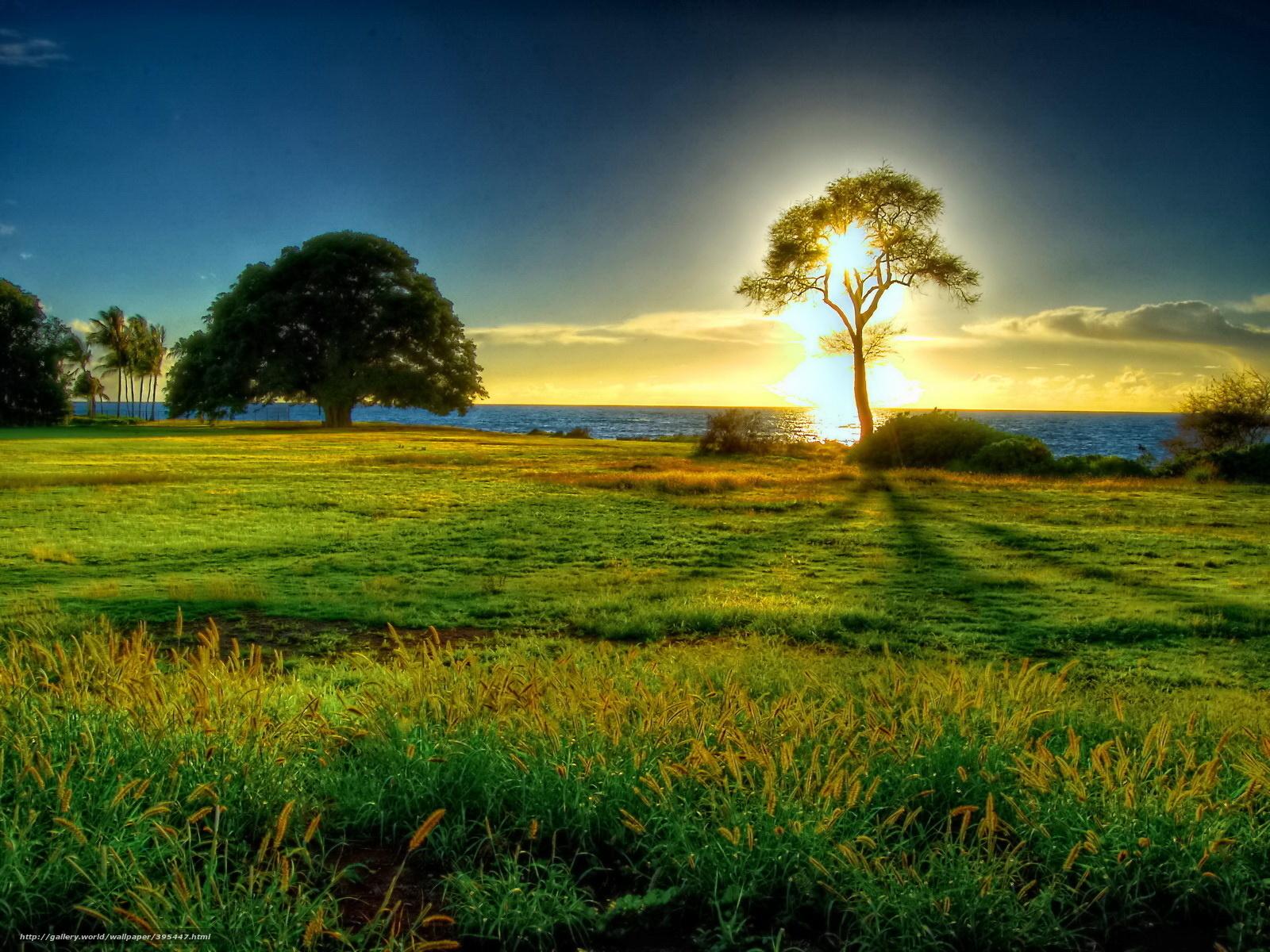 Картинки природы с разрешение 1600x1200