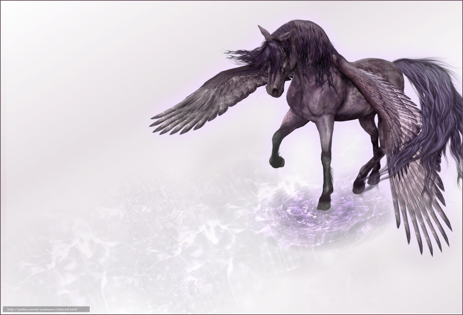 Scaricare Gli Sfondi Unicorno Ali Cavallo Sfondi Gratis Per La