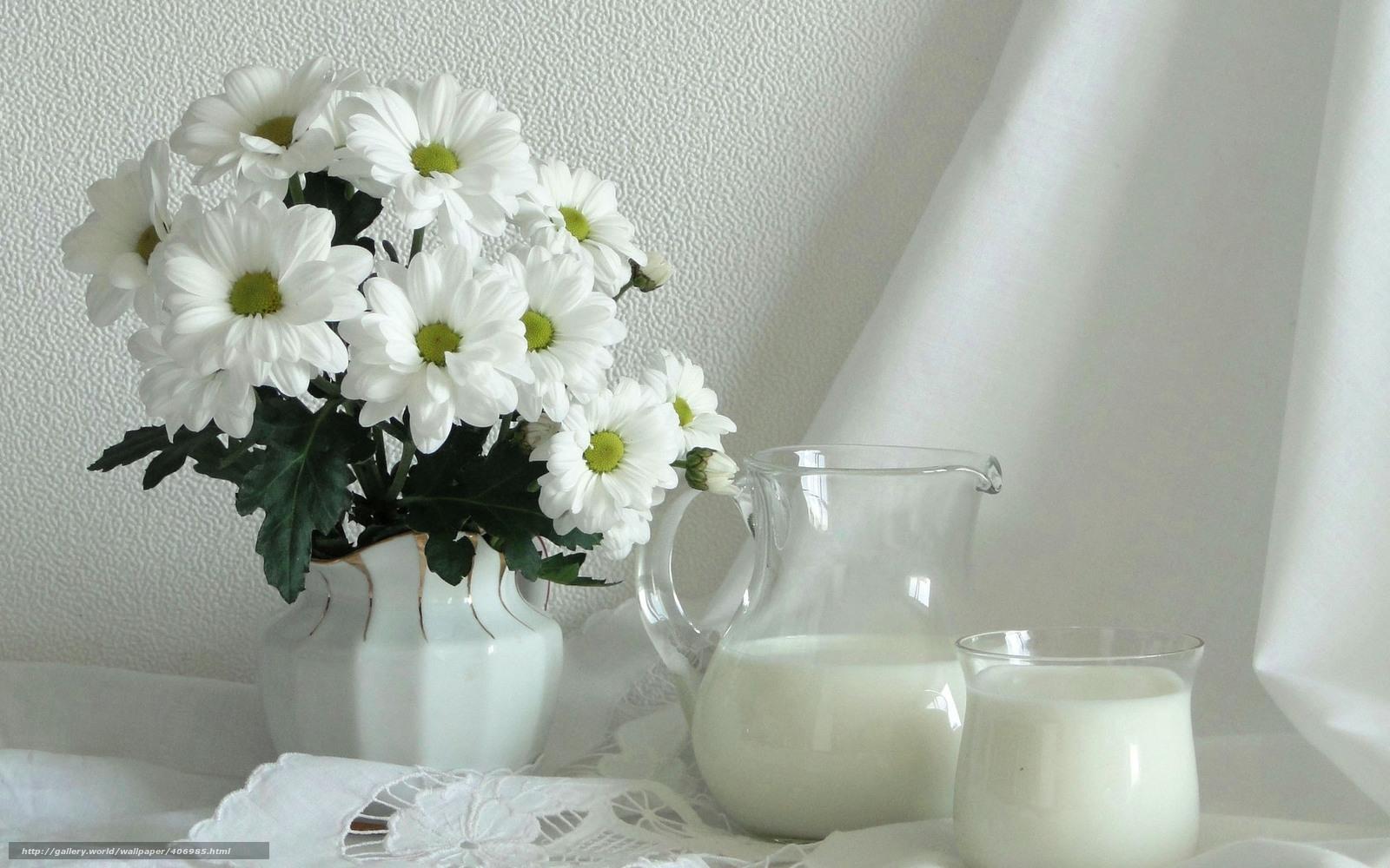 Скачать обои молоко,  цветы,  светлые тона бесплатно для рабочего стола в разрешении 1680x1050 — картинка №406985