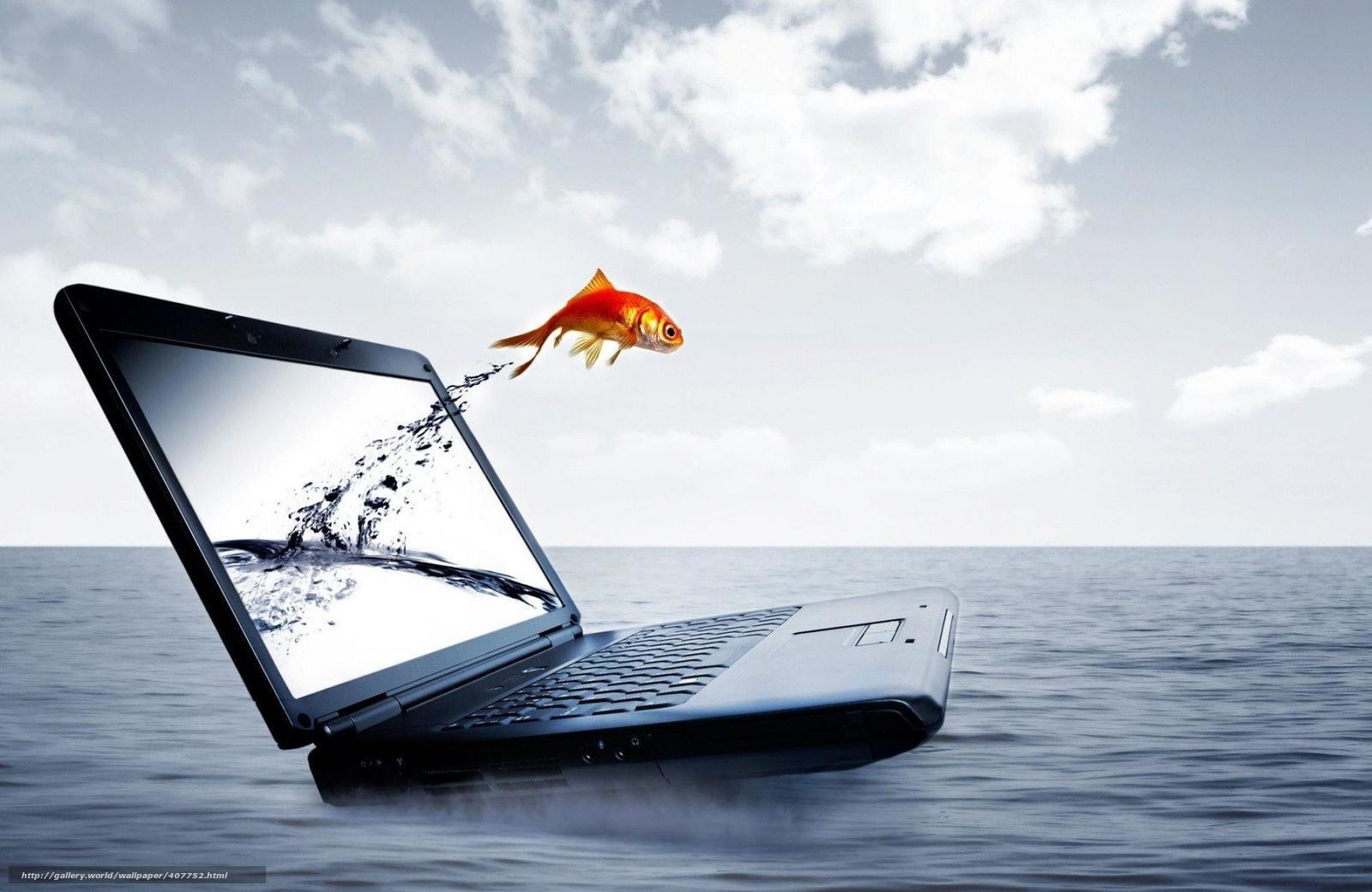 Tlcharger fond d 39 ecran cahier eau poisson sautant hors for Fond ecran ordinateur de bureau