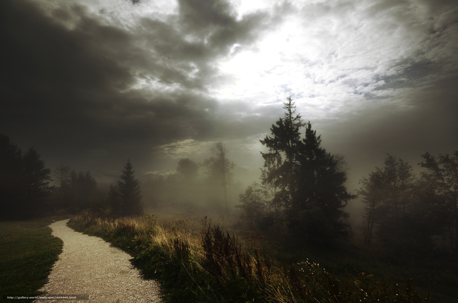 Download wallpaper fog,  Track,  footpath,  forest free desktop wallpaper in the resolution 2000x1325 — picture №409440