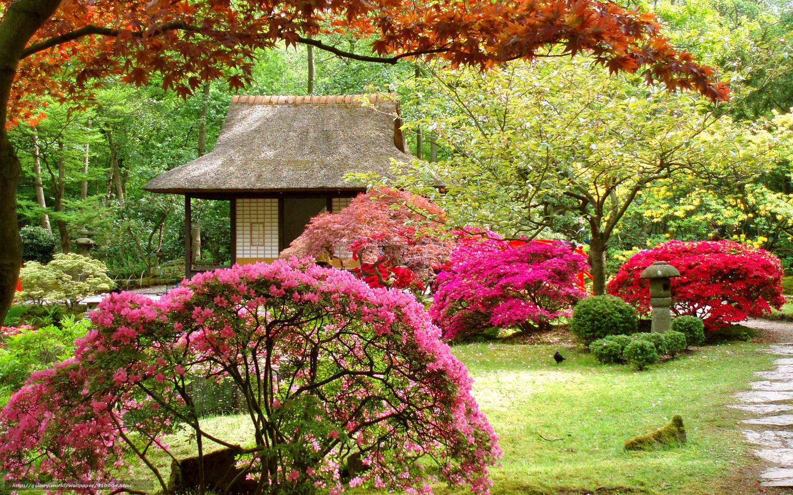 Tlcharger Fond decran Jardin Japonais, arbres, maison, paysage Fonds ...