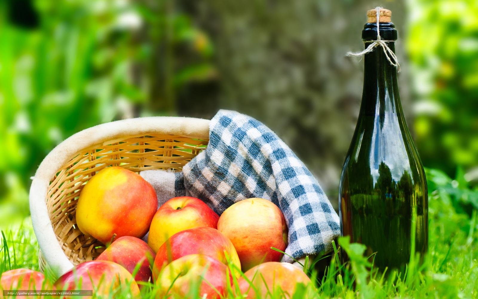 scaricare gli sfondi erba,  cestino,  tovagliolo,  vino Sfondi gratis per la risoluzione del desktop 1680x1050 — immagine №413861