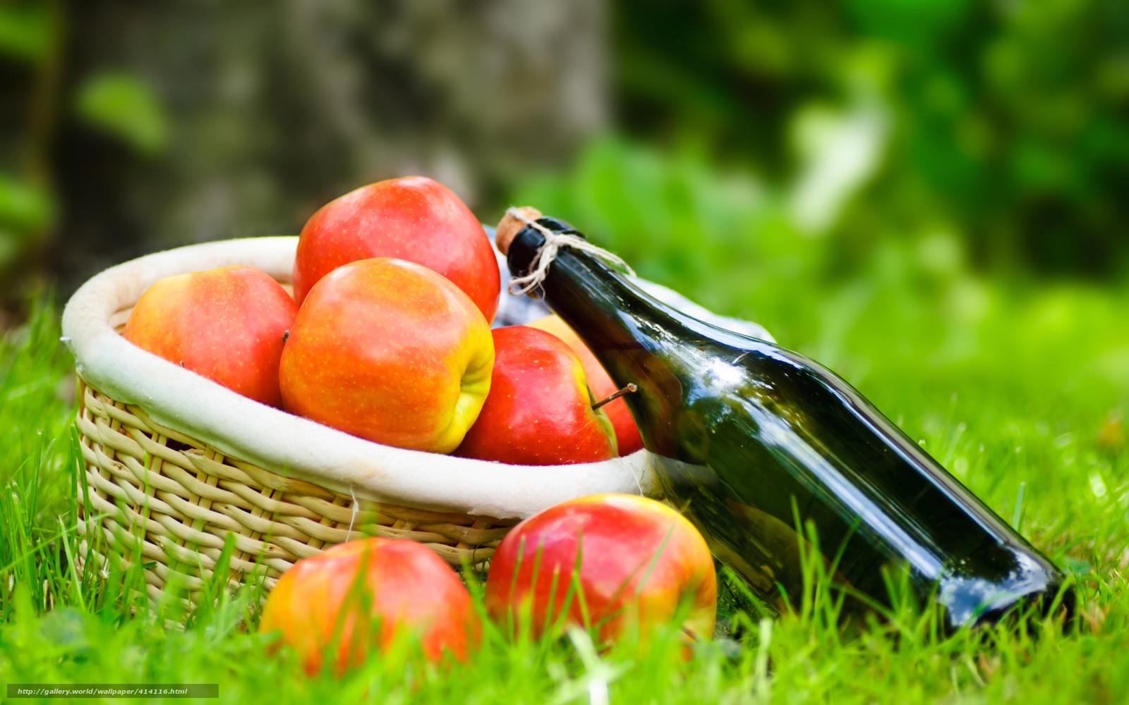 scaricare gli sfondi erba,  cestino,  tovagliolo,  vino Sfondi gratis per la risoluzione del desktop 1680x1050 — immagine №414116