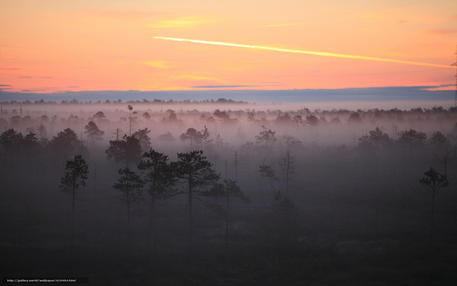 картинка туман
