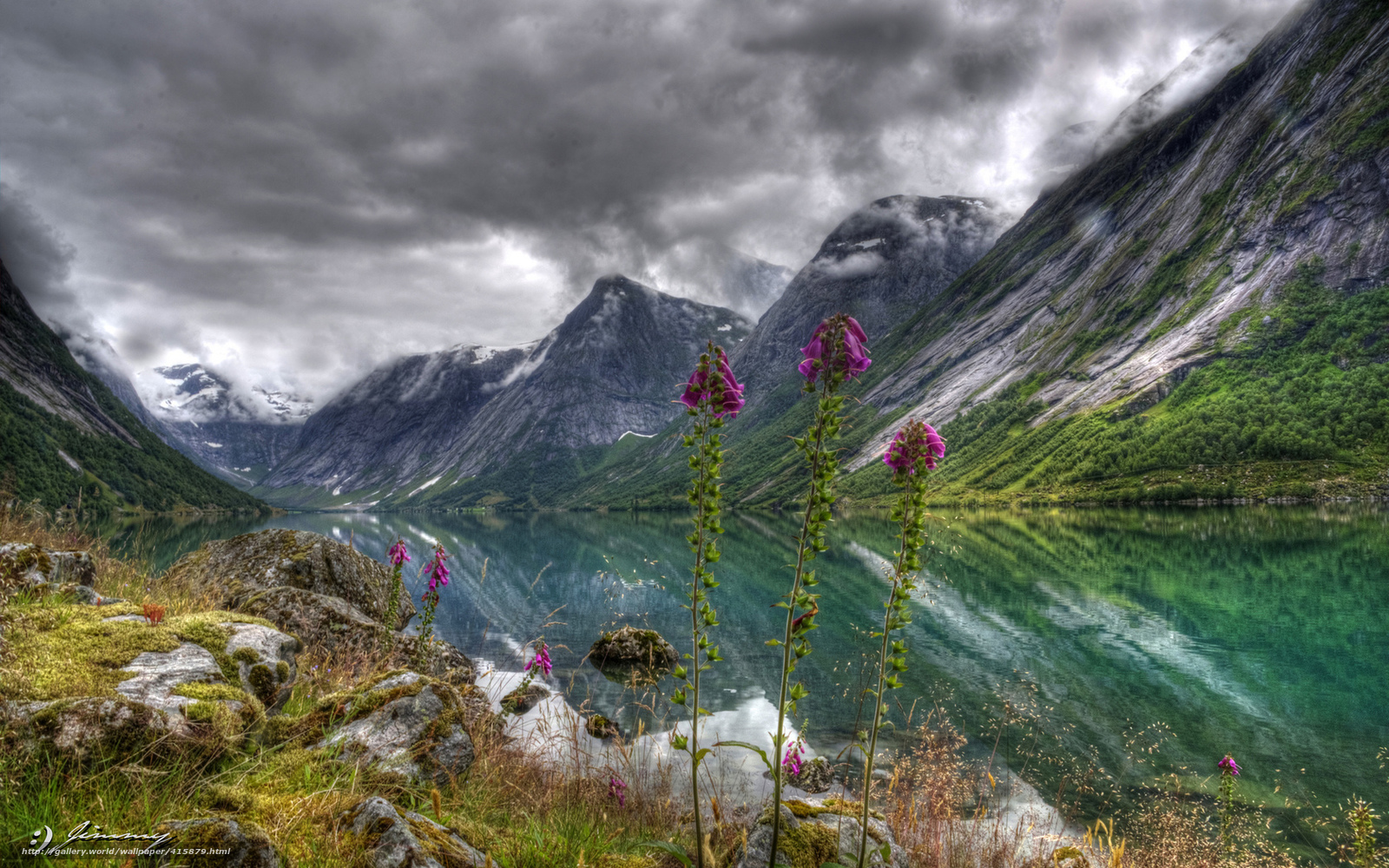 Free Flowers River Mountain: Download Wallpaper Nature, Mountains, Flowers, River Free