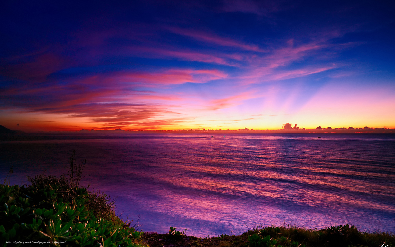 Download Wallpaper Sea Sunset Coast Mangrove Free Desktop