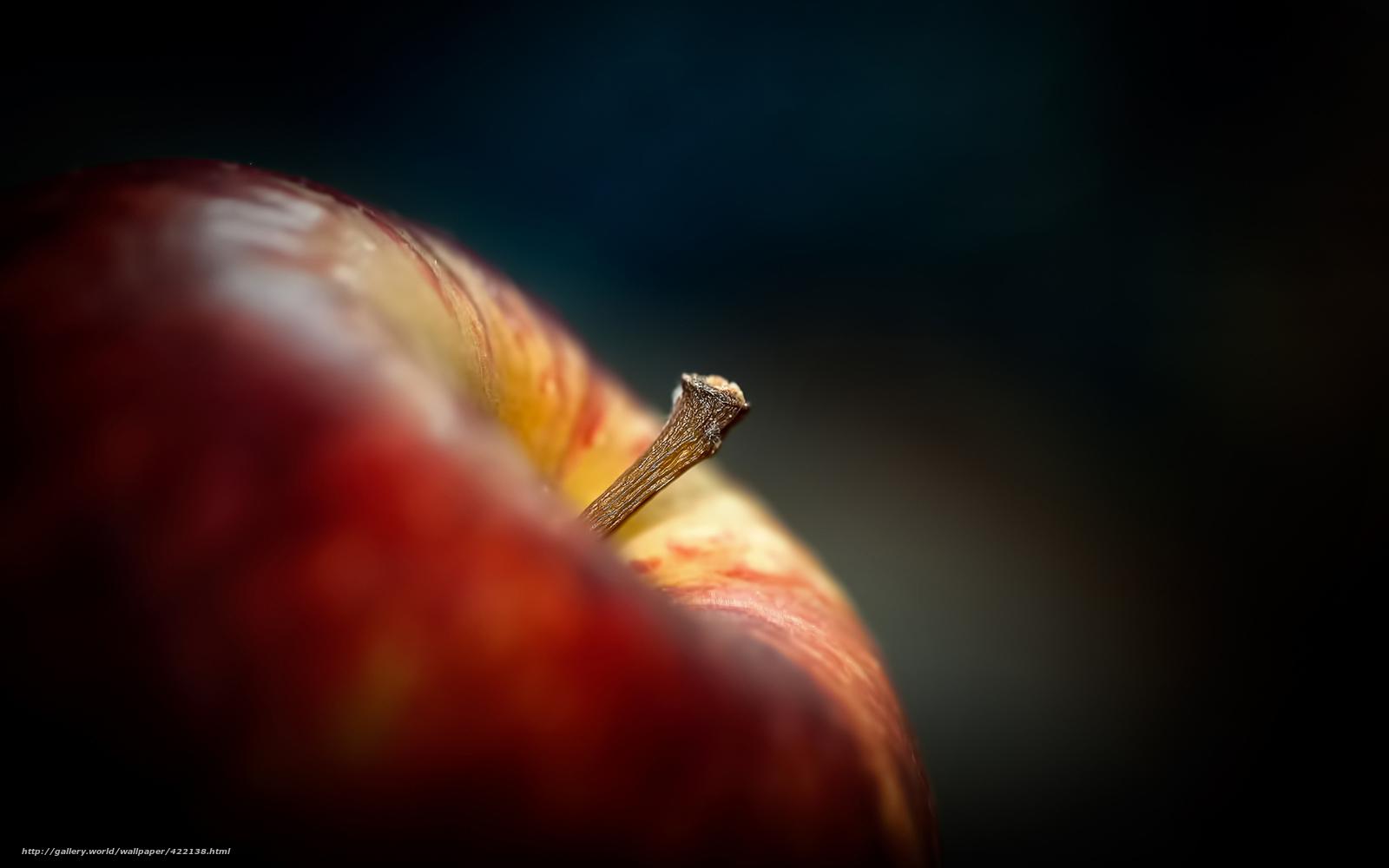 Tlcharger fond d 39 ecran pomme queue fond noir fonds d for Bureau fond d ecran