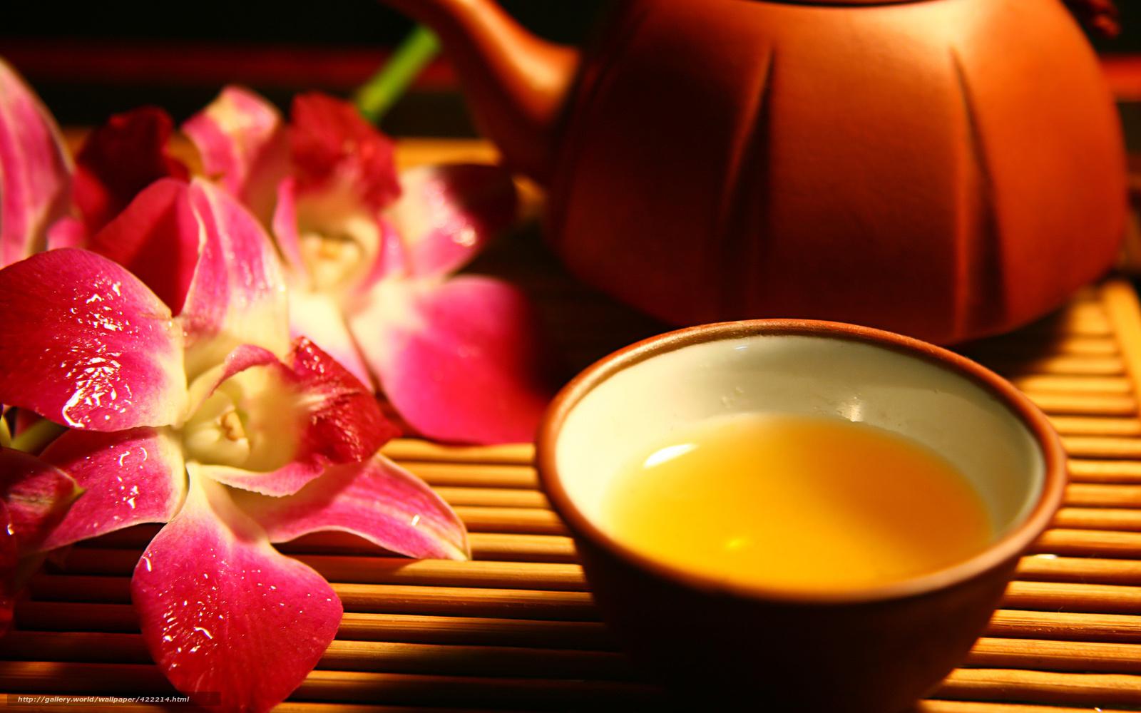 Скачать обои орхидея,  цветы,  чашка,  еда бесплатно для рабочего стола в разрешении 1680x1050 — картинка №422214