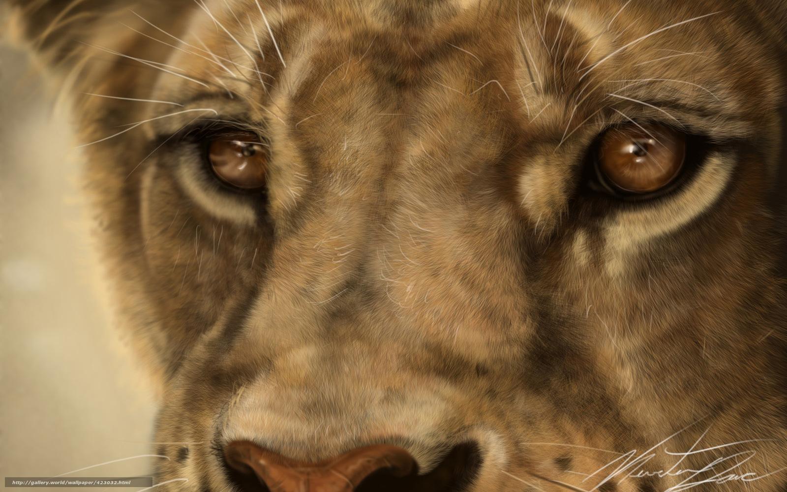 scaricare gli sfondi Arte,  leone,  leonessa,  gatto Sfondi gratis per la risoluzione del desktop 1680x1050 — immagine №423032