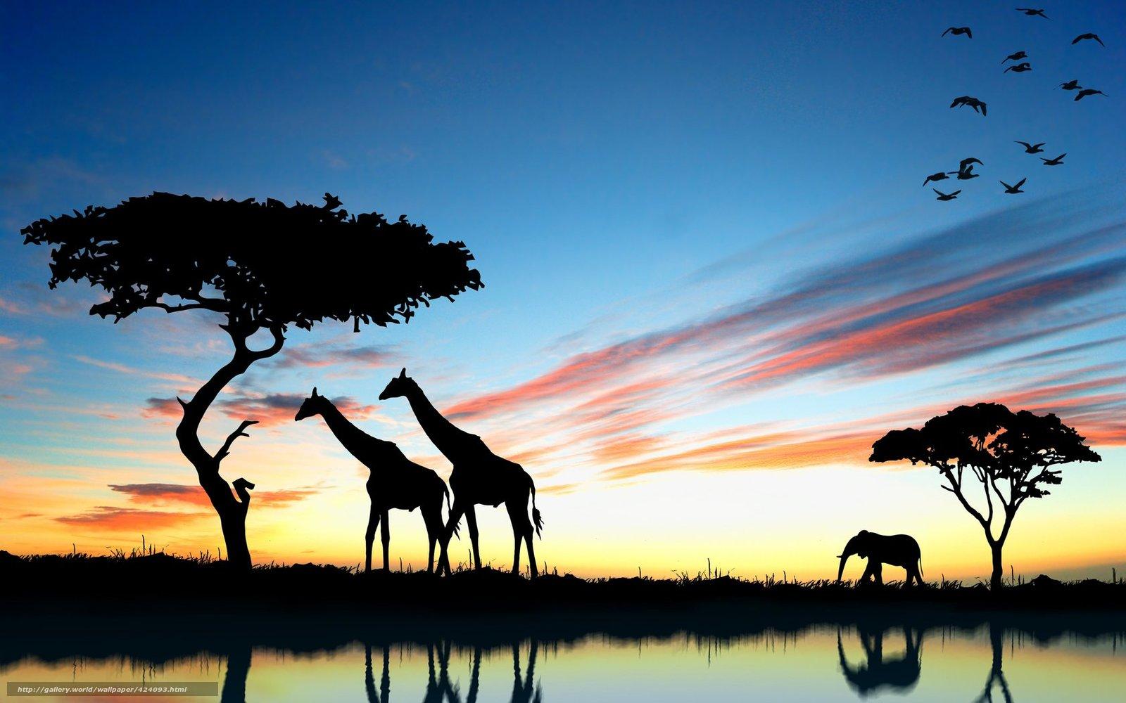 Tlcharger Fond d'ecran girafe,  lphant,  coucher du soleil,  Afrique Fonds d'ecran gratuits pour votre rsolution du bureau 1680x1050 — image №424093