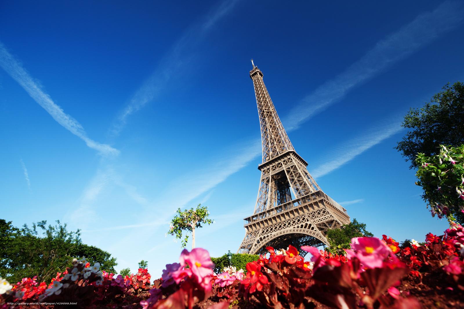 Скачать обои париж, франция, эйфелева башня, цветы бесплатно для.