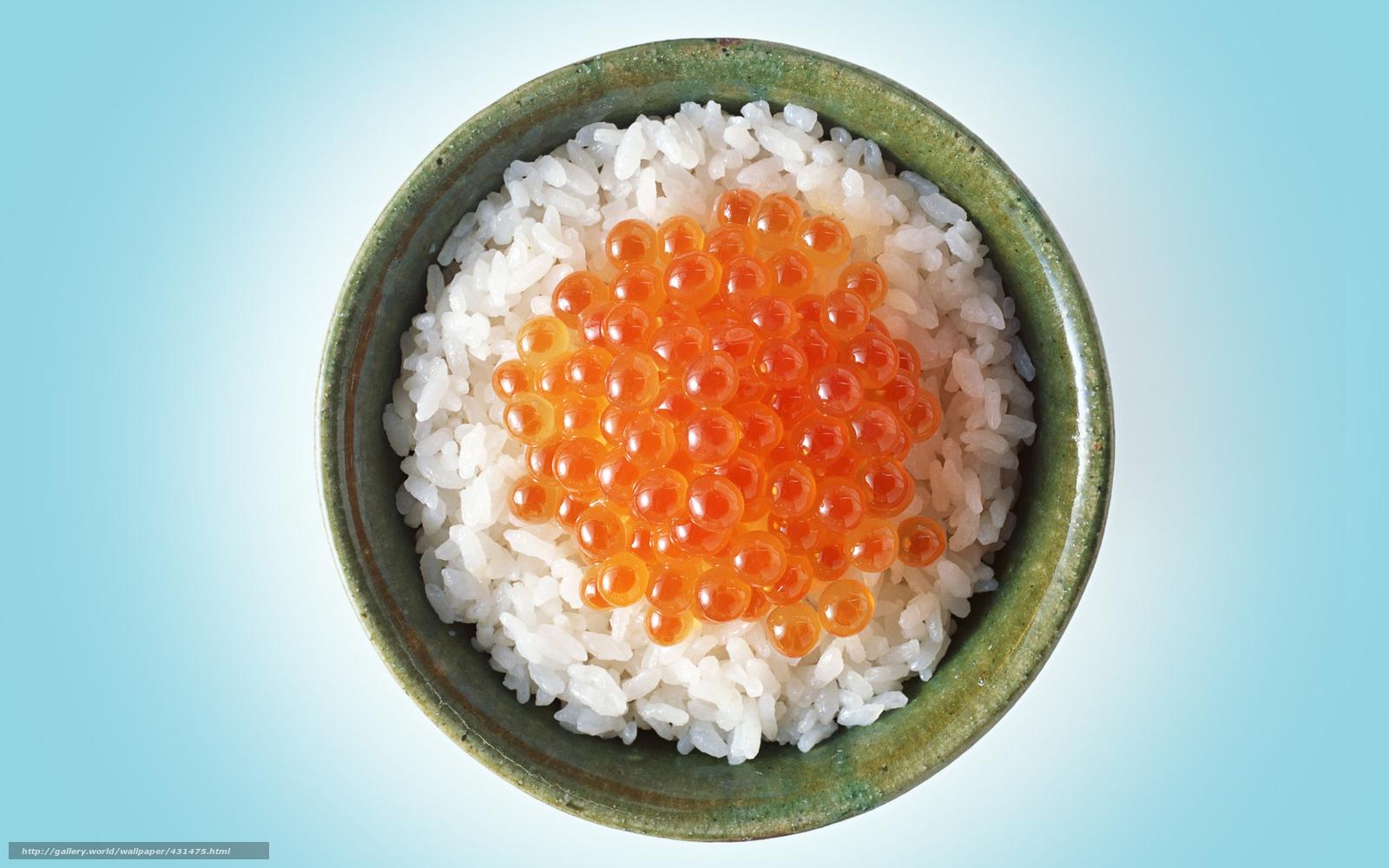 Download hintergrund tasse reis rot reh freie desktop tapeten in der auflosung 1680x1050 - Reis kochen tasse ...
