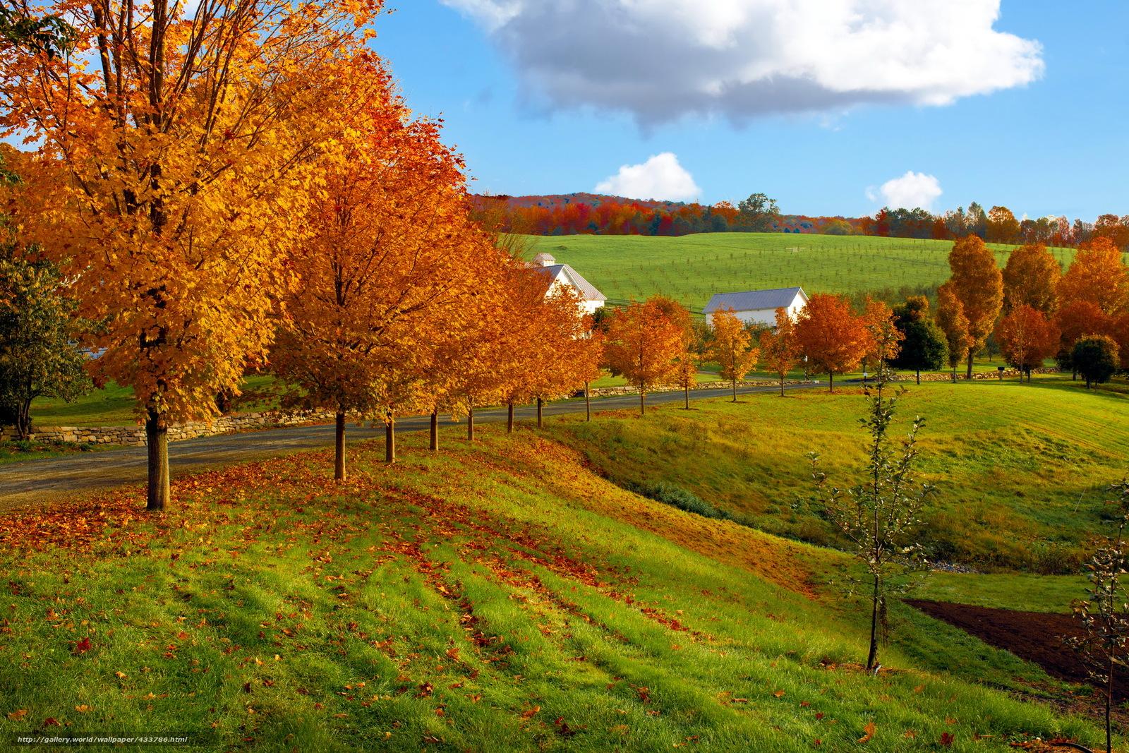 Скачать обои осень,  дорога,  поля,  дома бесплатно для рабочего стола в разрешении 2220x1480 — картинка №433786