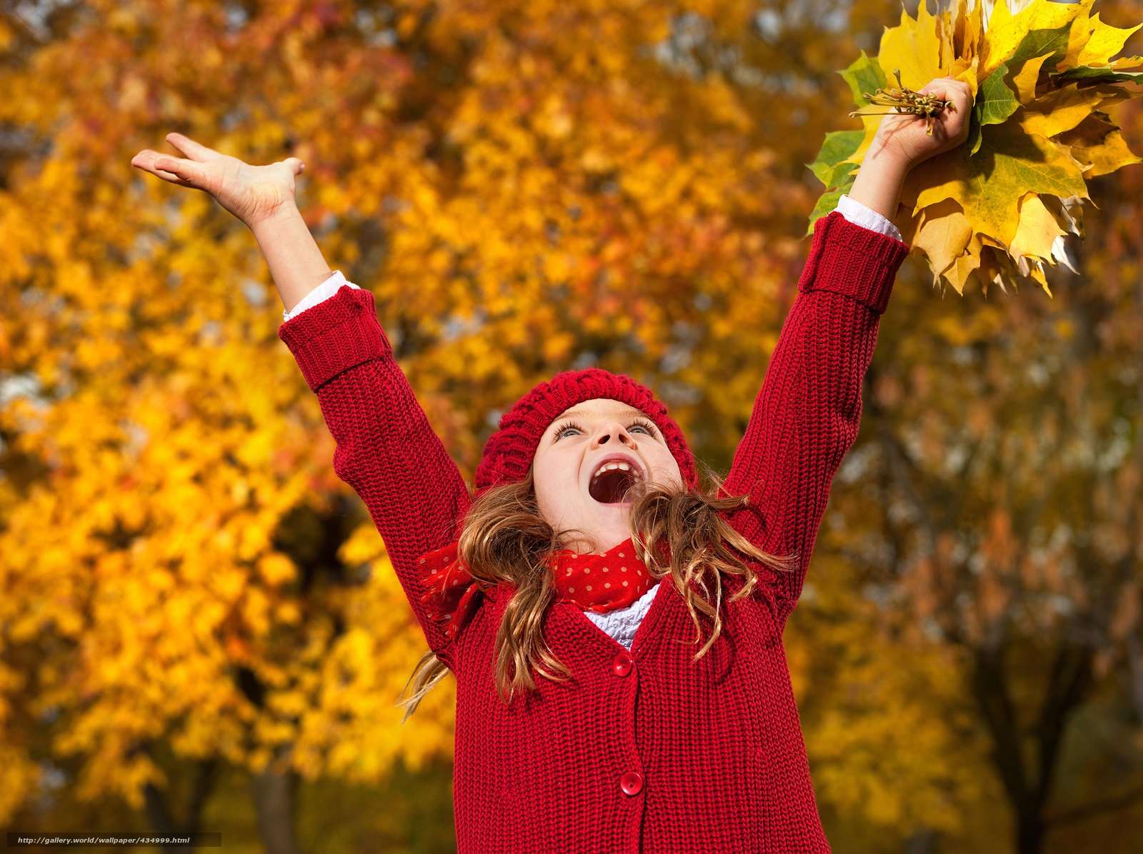 Download wallpaper little,  girl,  autumn,  leaves free desktop wallpaper in the resolution 6088x4550 — picture №434999