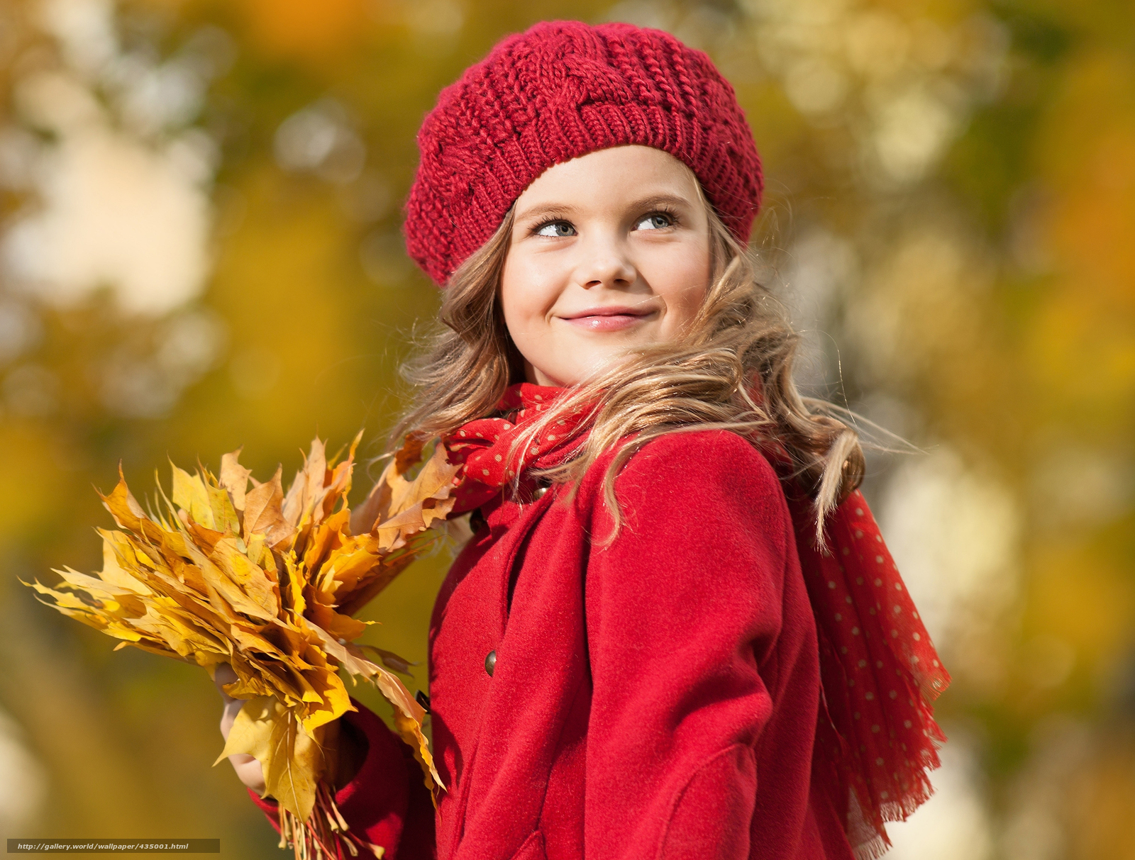 Download wallpaper little,  girl,  autumn,  leaves free desktop wallpaper in the resolution 6088x4617 — picture №435001