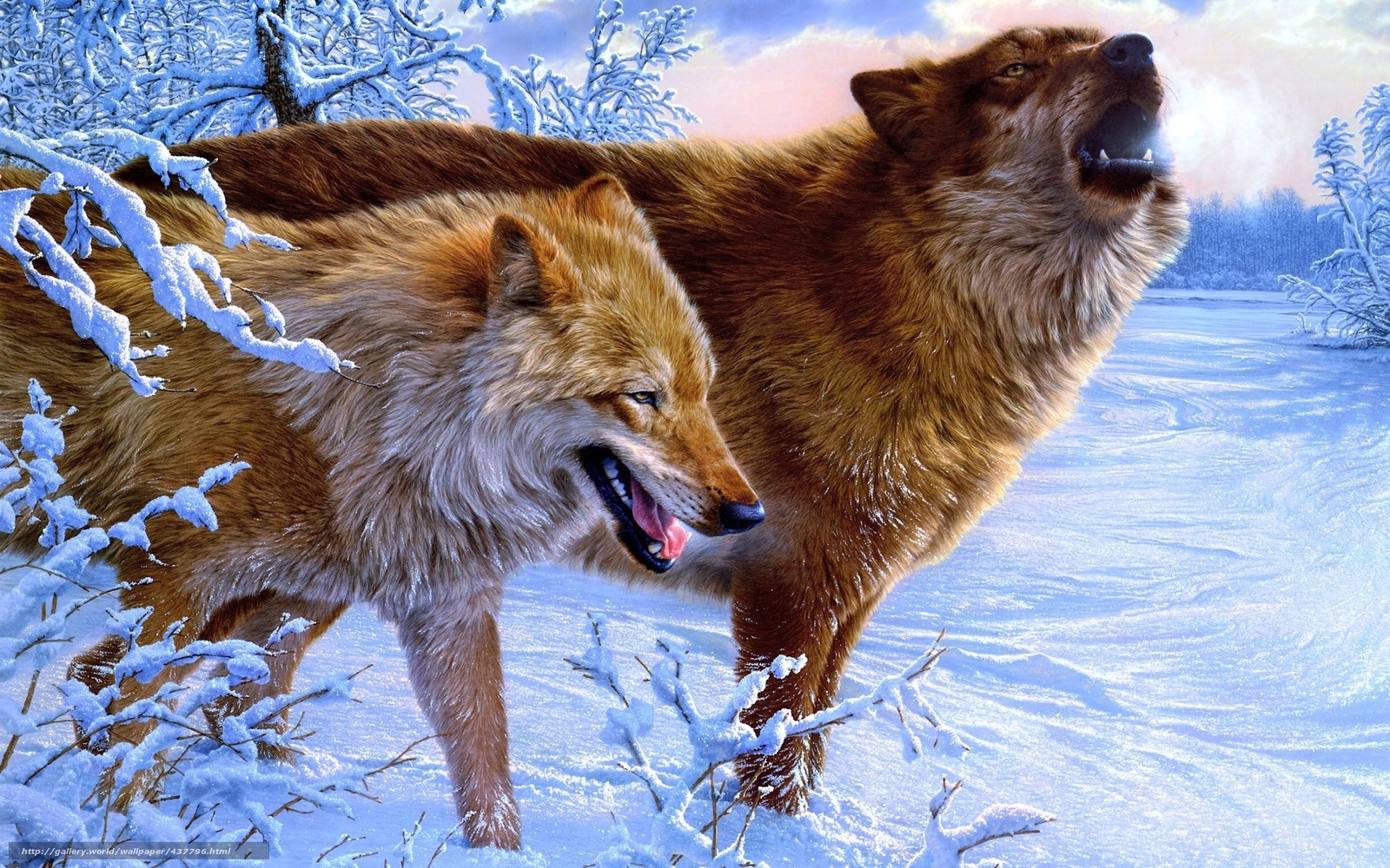 Download wallpaper Wolves,  Winter,  Trees free desktop wallpaper in the resolution 1920x1200 — picture №437796