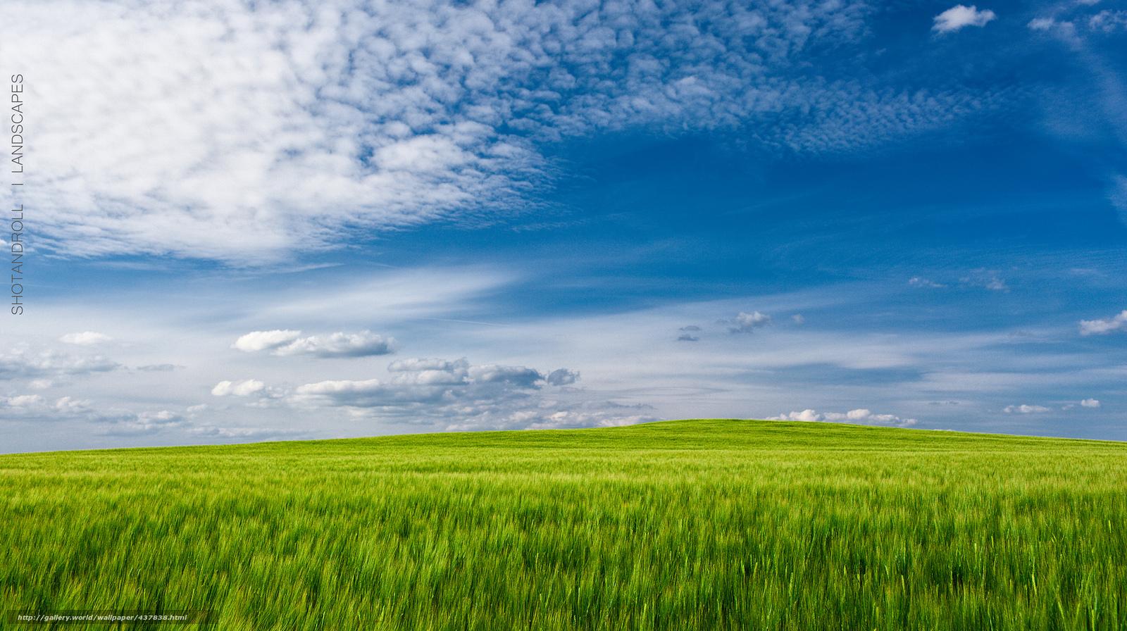 Tlcharger fond d 39 ecran champ vert herbe ciel paysage for Paysage vert