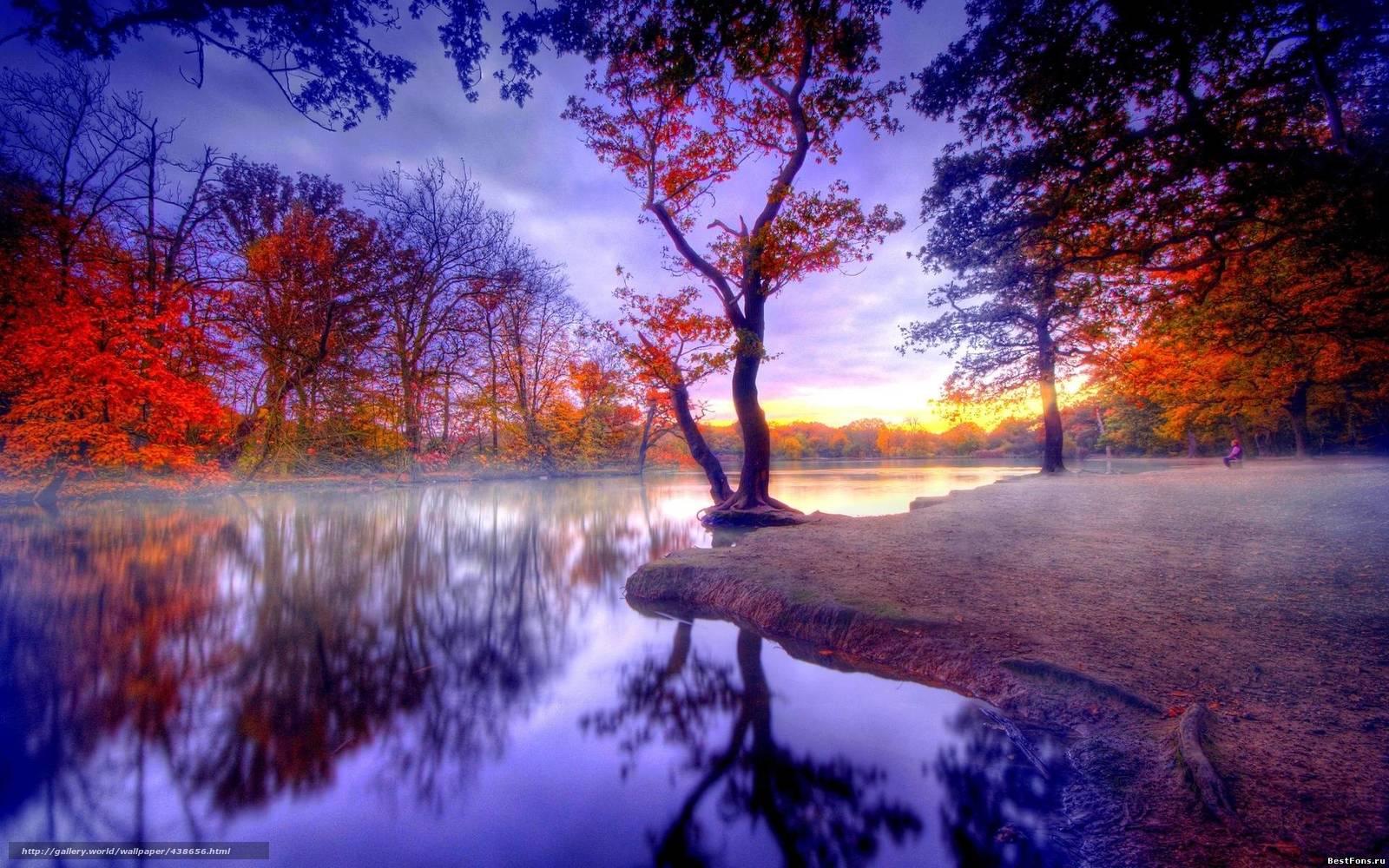 Scaricare gli sfondi autunno acqua alberi paesaggio for Immagini per desktop natura