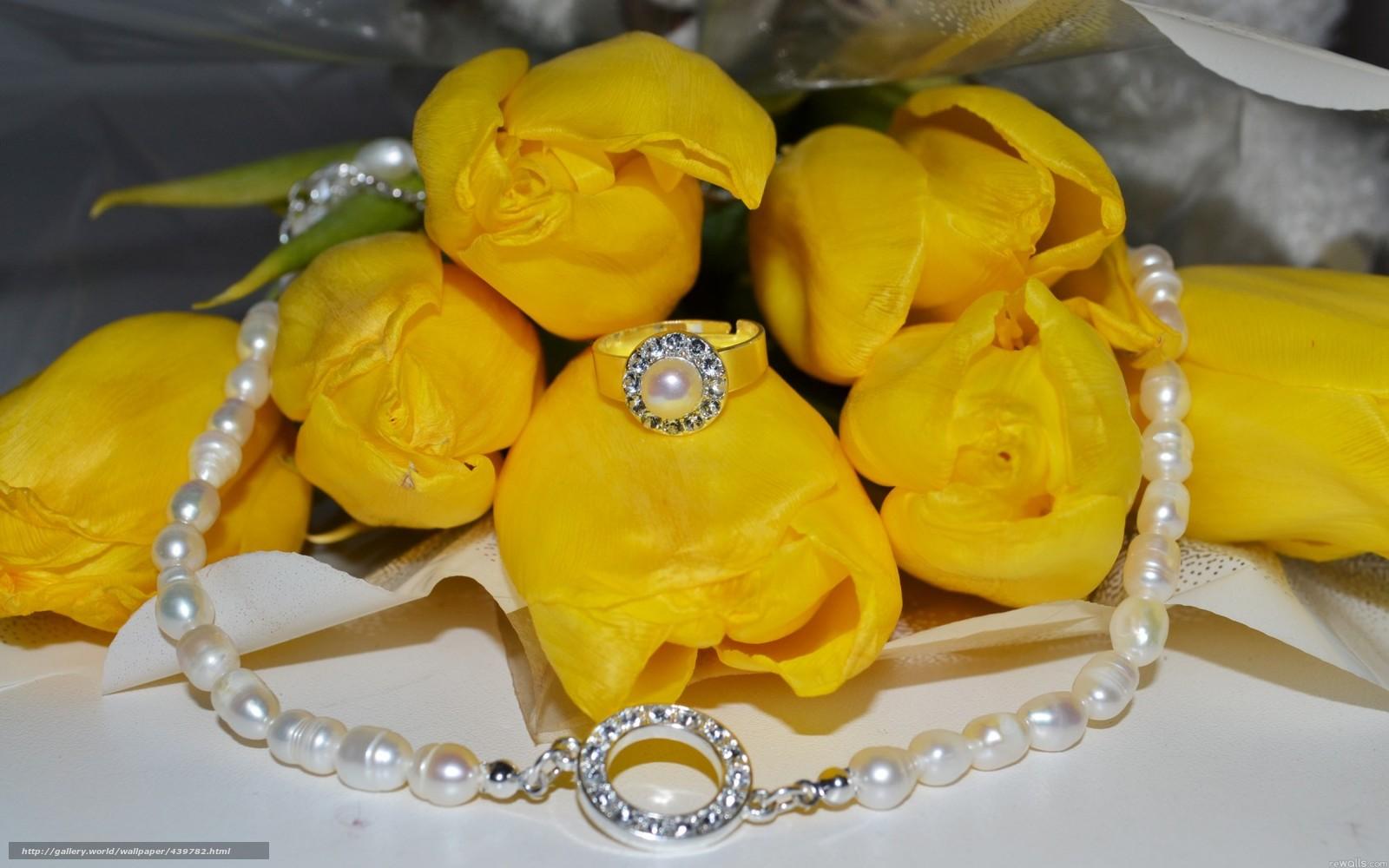 Скачать обои цветы,  желтые,  жёлтые,  цветок бесплатно для рабочего стола в разрешении 1680x1050 — картинка №439782