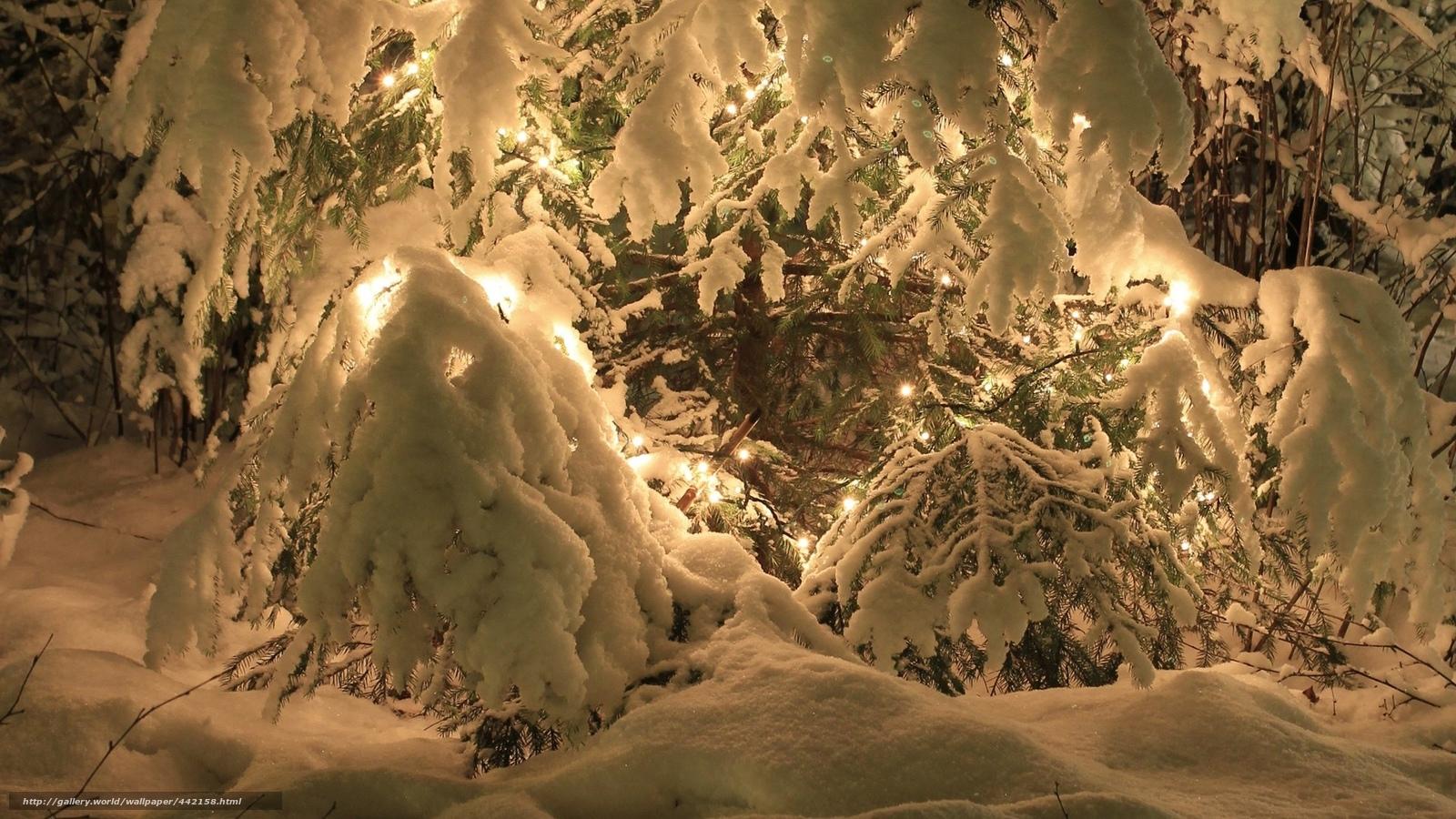 1600x900 hd desktop wallpaper winter - photo #28