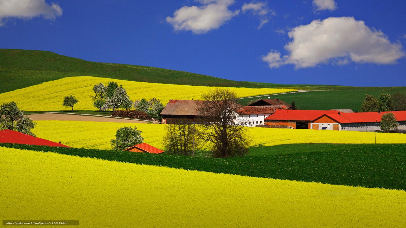 Download wallpaper field houses summer farm free desktop wallpaper