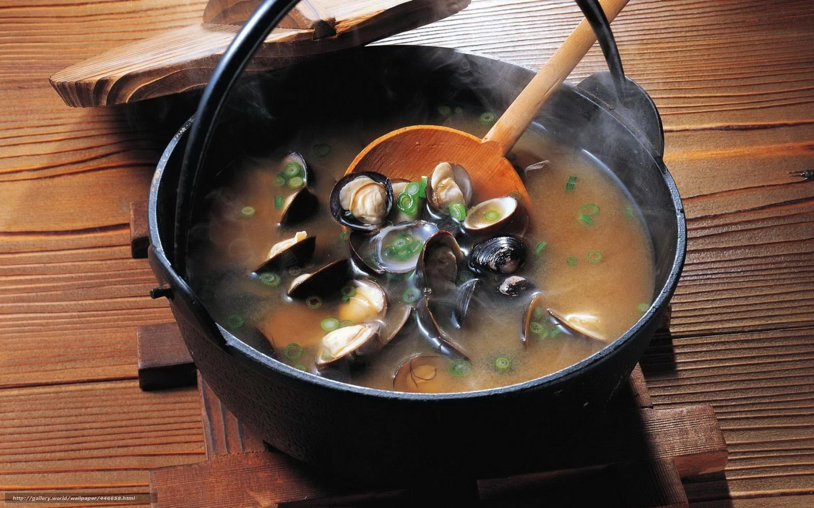 Download wallpaper soup,  boiler,  Mussels free desktop wallpaper in the resolution 1680x1050 — picture №446658