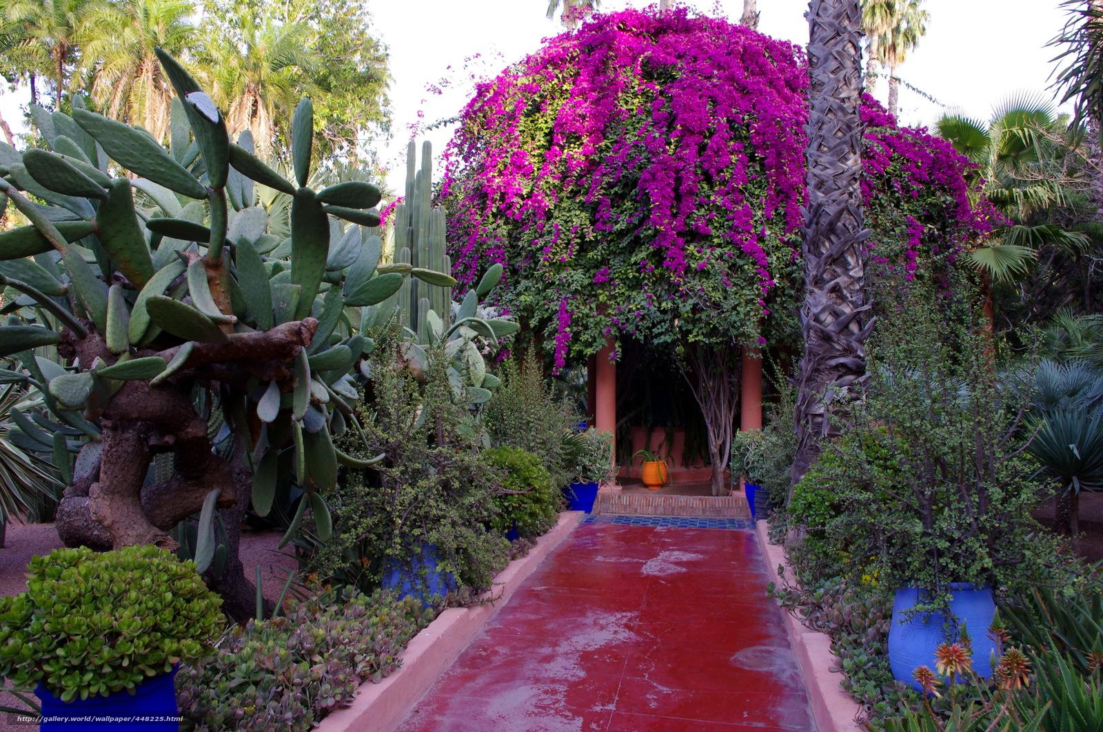tlcharger fond d 39 ecran jardin maroc marrakech jardin majorelle fonds d 39 ecran gratuits pour. Black Bedroom Furniture Sets. Home Design Ideas