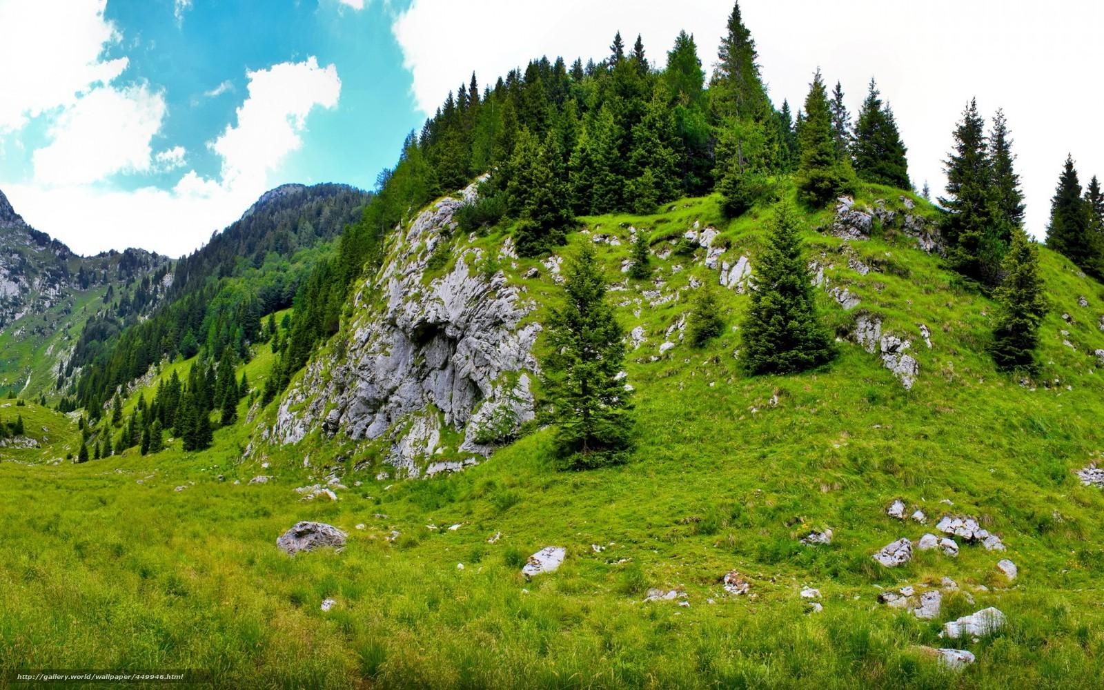 Scaricare gli sfondi montagna pendenza slovenia estate for Desktop gratis estate