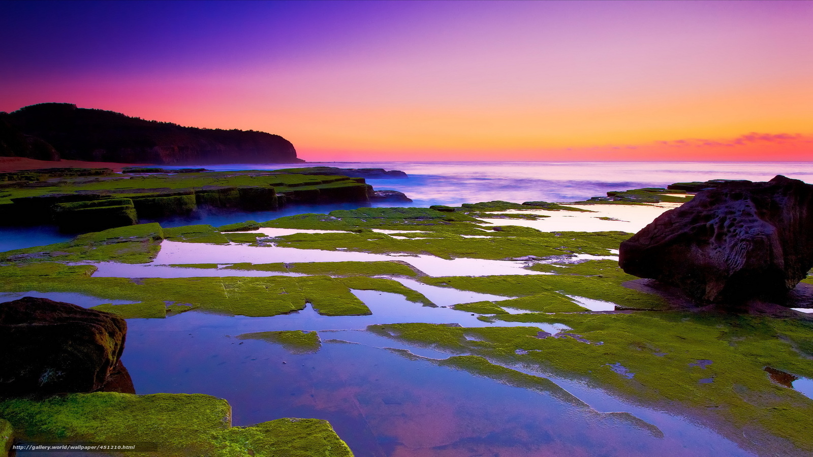 Download wallpaper moss,  stones,  sunset,  sea free desktop wallpaper in the resolution 2560x1440 — picture №451210