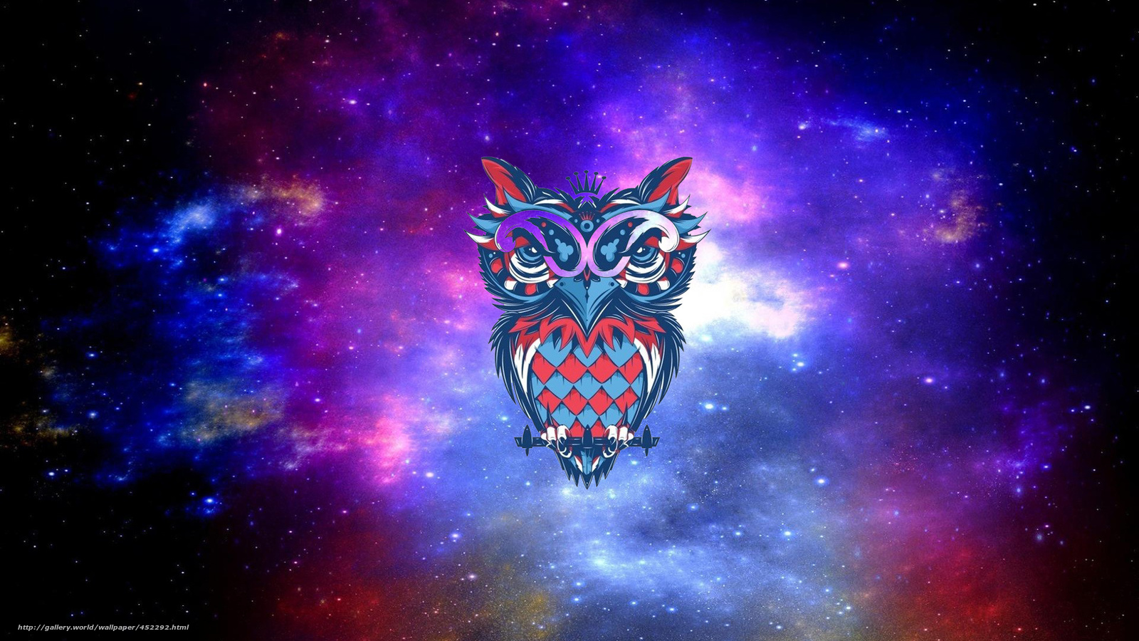 Download Wallpaper Space Owl Art Free Desktop In The Resolution 1920x1080 Picture No452292