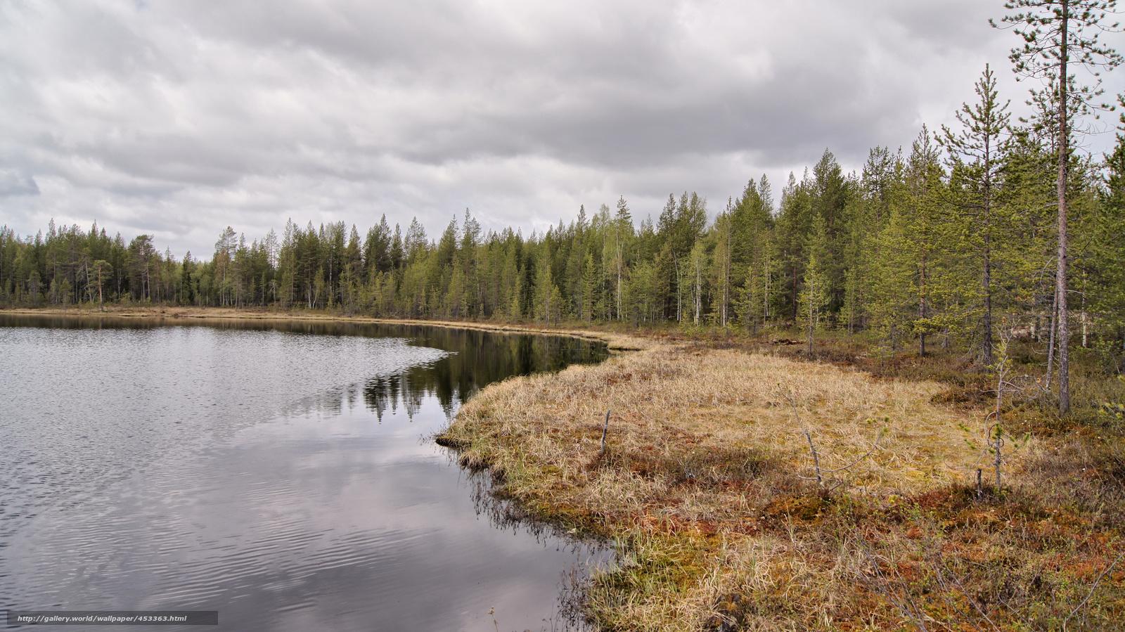pobra tapety hdr,  las,  jezioro Darmowe tapety na pulpit rozdzielczoci 4912x2760 — zdjcie №453363
