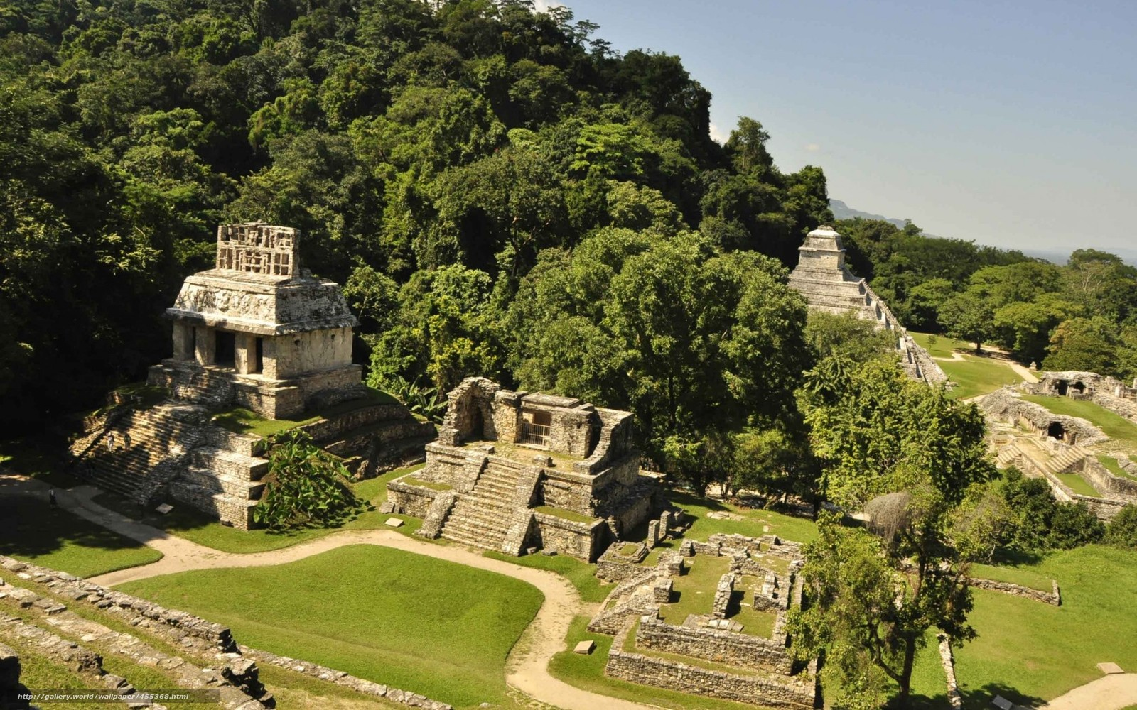 Download wallpaper Mexico,  Palenque,  Mayan city,  ancient civilizations free desktop wallpaper in the resolution 1680x1050 — picture №455368