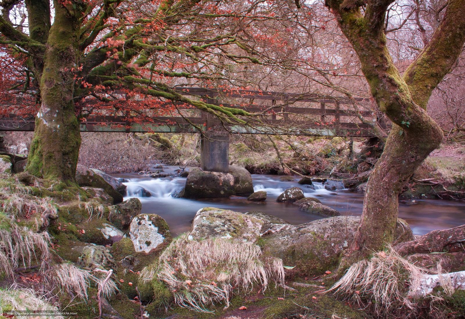 Скачать обои Река,  Камни,  belstone,  england бесплатно для рабочего стола в разрешении 2048x1404 — картинка №460379