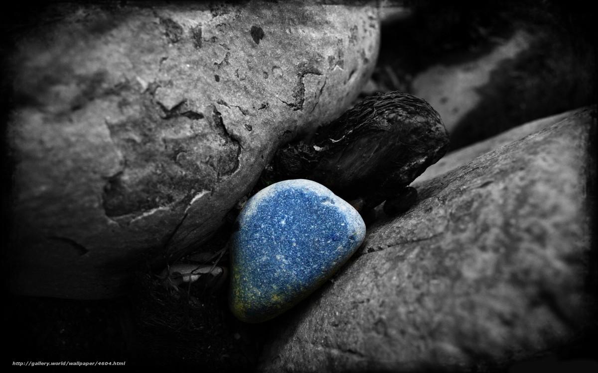 Фото черно белое брюнетка