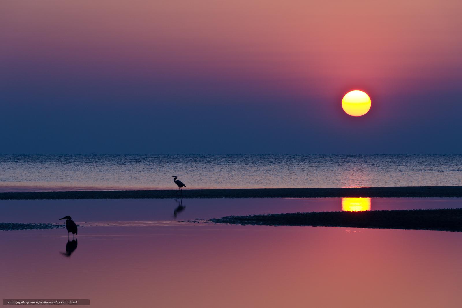 Скачать обои Вечер,  малиновый,  яркий,  закат бесплатно для рабочего стола в разрешении 4861x3241 — картинка №465311