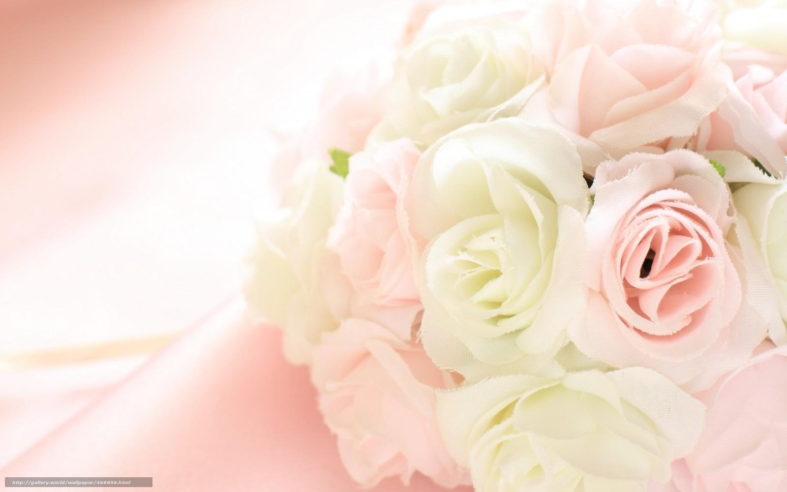 бежевые розы обои на рабочий стол № 51793  скачать