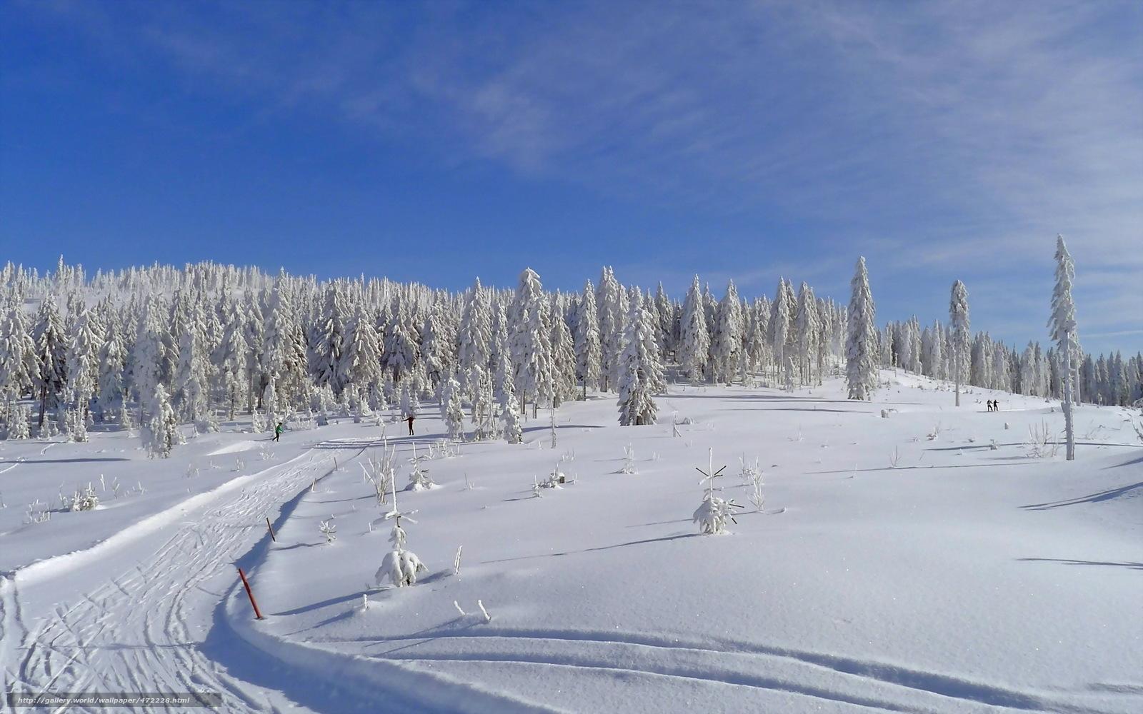 scaricare gli sfondi inverno,  campo,  traccia,  paesaggio Sfondi gratis per la risoluzione del desktop 1920x1200 — immagine №472228